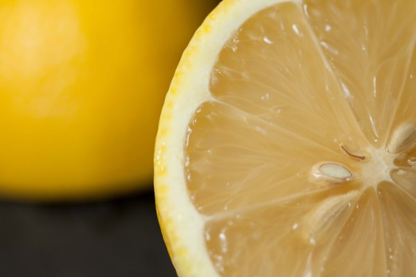 lemon cross-section